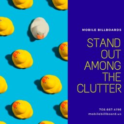 Stand Out Among The Clutter
